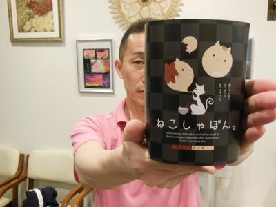古川さんネコしゃぼん1.JPG