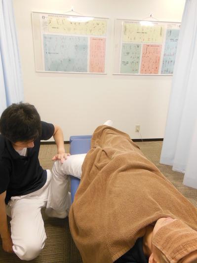腸腰筋LE MOB1.JPG